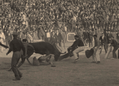 Hemingway_bullfighting_cropped